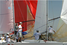 J/24 sailing teams under spinnaker at Worlds