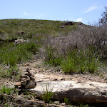 Small cairn marking track up to Mt Hay (40629)