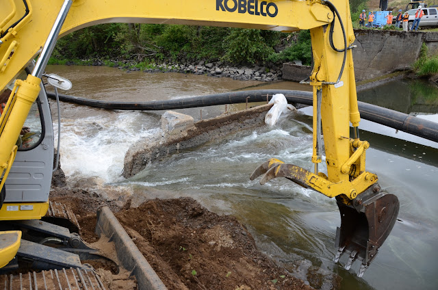 calapooia dam removal