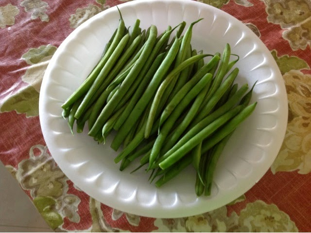 raw string beans on a paper plate
