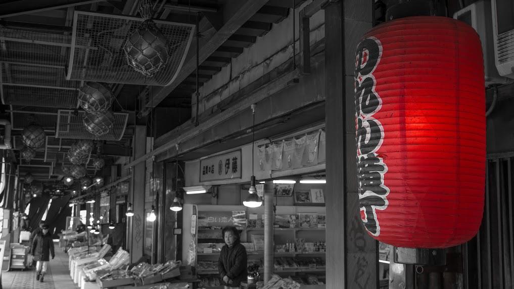 Viaje al país del pow naciente. Japón.