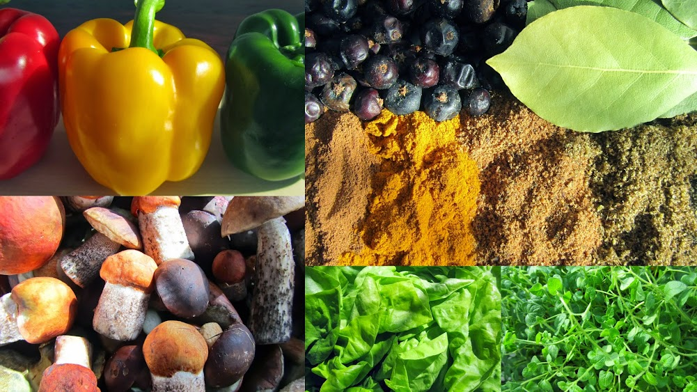 Rady Kulinarka | Prtodukty