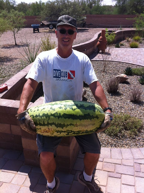 Ginormous water melon