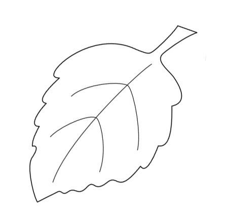 Осенний лист березы фото