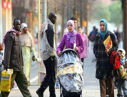 وجهة نظر بمناسبة اليوم الوطني للمهاجر: