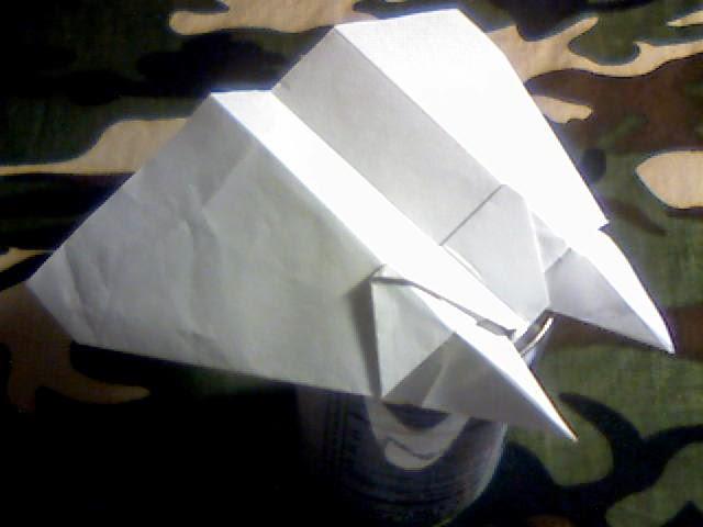 Wing 41