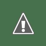 Ascidie rouge