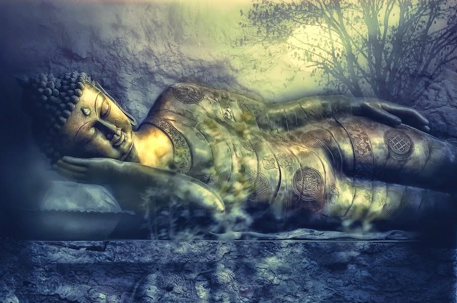 Bàn tay Đức Phật_10