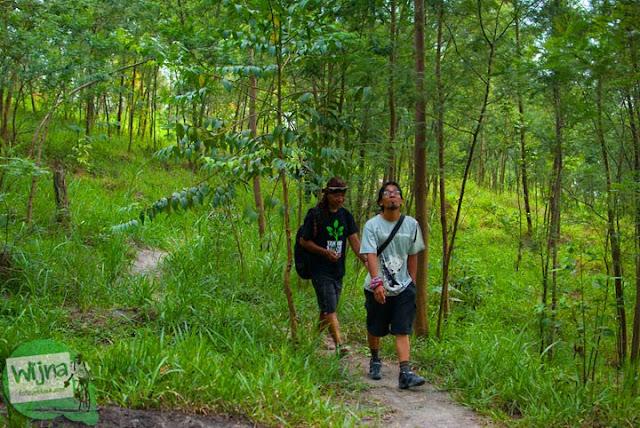 Masuk hutan mencari Mata Air Bebeng di Glagaharjo