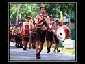 drumband marching band musik sekolah