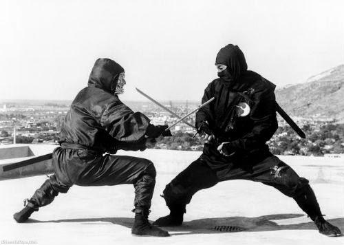Bí mật về Ninja