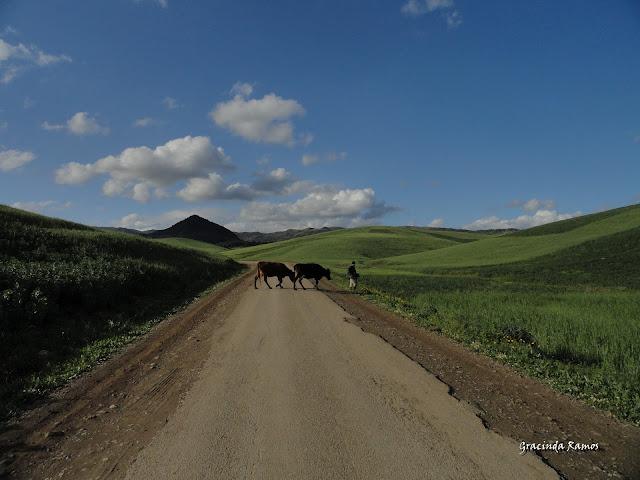 marrocos - Marrocos 2012 - O regresso! - Página 8 DSC07405