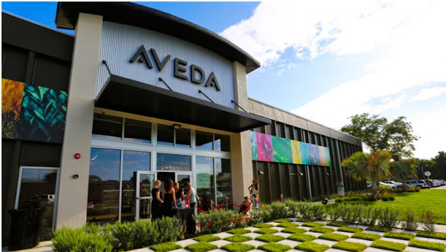 Aveda Institute Tampa Bay  About  Google. Jeep Ignition Switch Problems. Cable Tv Internet Providers In My Area. The Woodlands Assisted Living. Garage Door Installation San Francisco. Taxability Of Stock Options University Of Nc. Information Technology Requirements. Bank Of America Secure Email Service. Car Insurance Premium Calculator