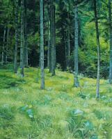 """Kovács Zsóka: """"Soproni erdő""""  2011, olaj-vászon, 50 x 40 cm"""