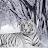 Annie Tipton avatar image
