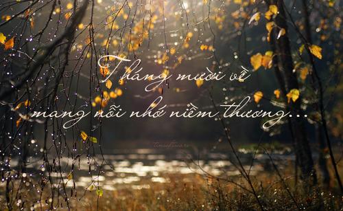 Những bài thơ tình tháng 10, tháng mười hay nhất