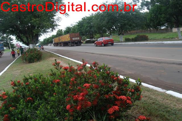 Rodovia BR 316 em Bacabal