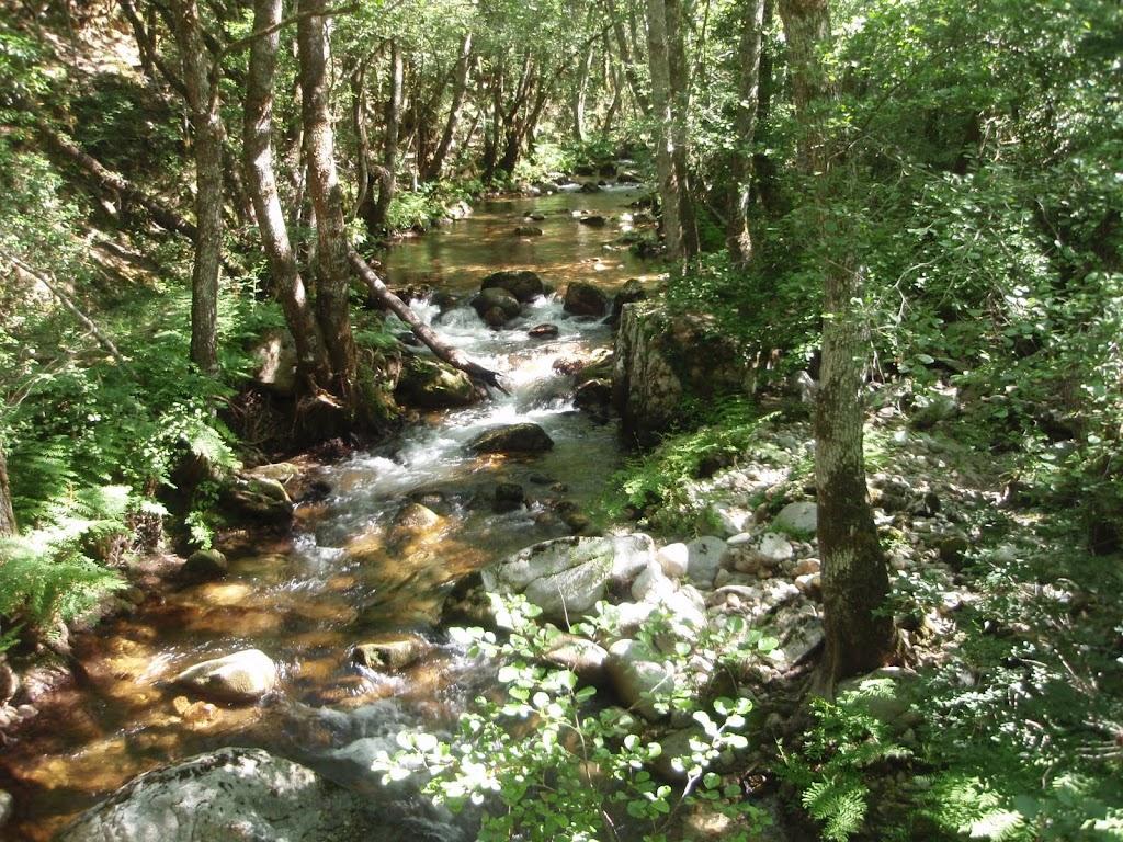 Ruisseau du Codi en bas de la descente de Sorbollano