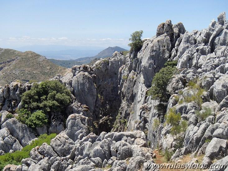 Vias ferratas de Benalauria y Benadalid