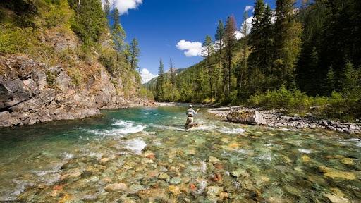 Fly-Fishing in the Elk River, East Kootenays, British Columbia.jpg