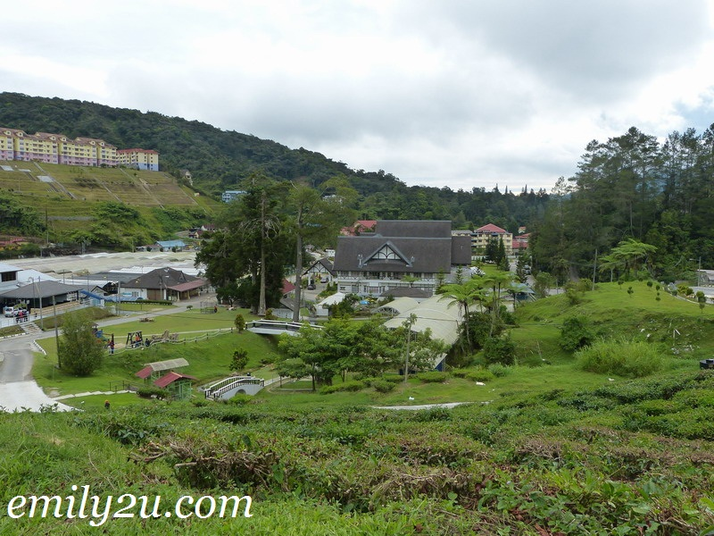 MARDI Agro Technology Park, Cameron Highlands