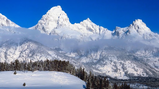 Snow-Capped Peaks, Grand Teton National Park, Wyoming.jpg