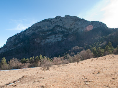 Roca Forcada