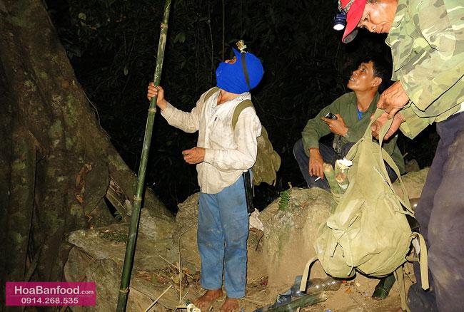 Khai thác Mật Ong Rừng ở Lai Châu - 19