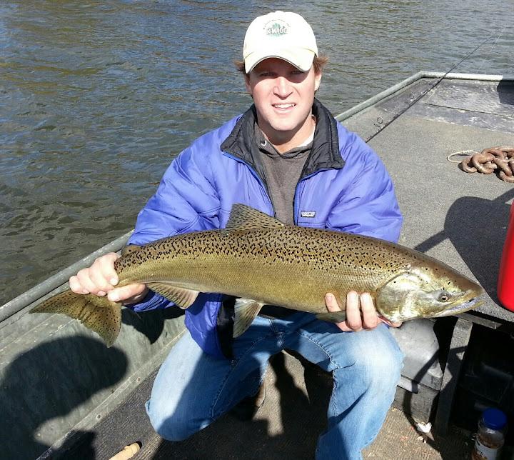 Pere Marquette River Salmon Fishing