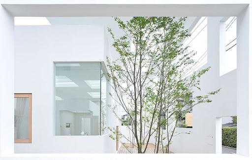 744427144_house-n-fujimoto-4978.jpg (900×569)