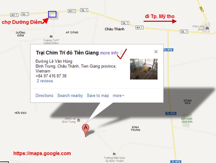 Bán Chim trĩ đỏ, trĩ xanh - Tiền Giang, Vĩnh Long, Long An, Đồng Tháp, Cần Thơ 0974168738