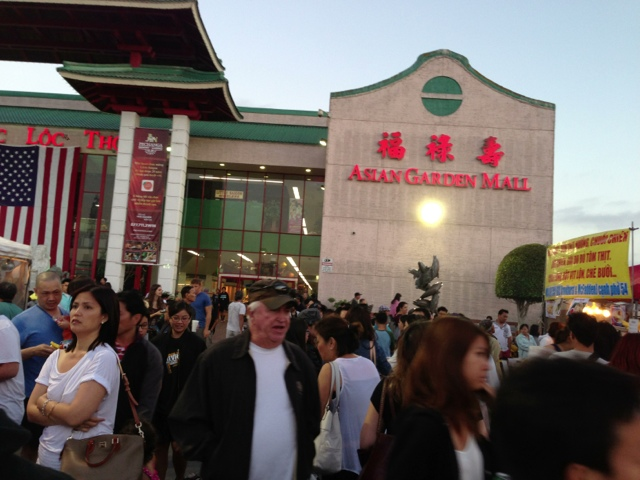 Asian Garden Mall Night Market Sunny N Blue