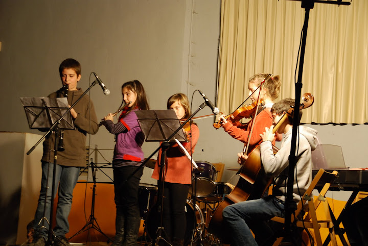 Concerts d'hivern (gener 2012)