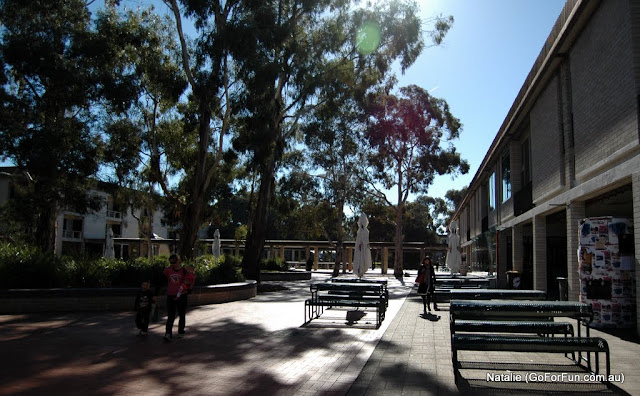 Canberra, the Very First Impression - Part 3 - Weather. University of Canberra. What's Next