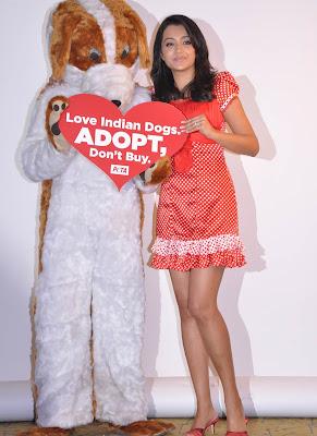 Trisha Latest Stills as PETA Goodwill Ambassador