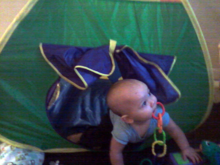 Our 10 Month Old Baby Playing In Tent. He carries the toys in his mouth while crawling and is starting to walk