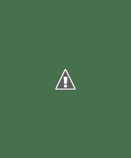 7 Mẫu váy không thể thiếu trong tủ đồ của các quý cô