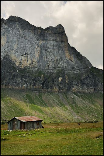 Traversée des Alpes, du lac Léman à la Méditerranée DSC_9431%2520raw-594%252Bcadre