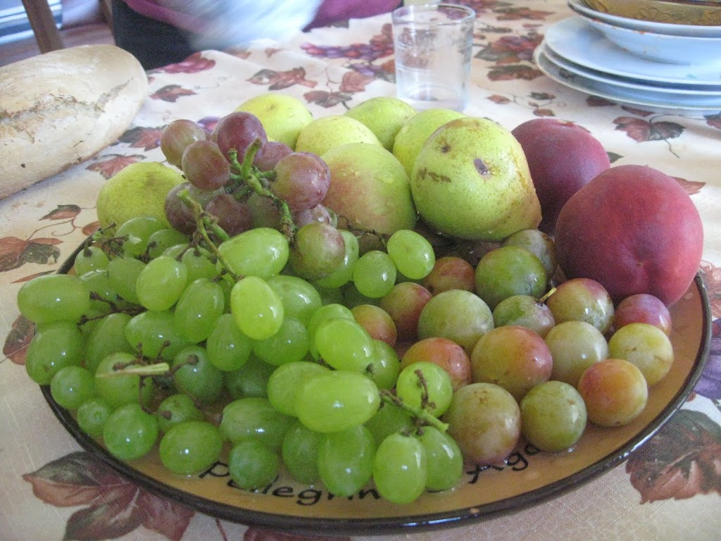 Italian Vegetarian Recipes and the Culture of Vegetables in Southern Italy (Verdure)