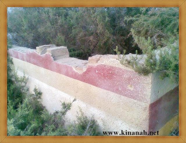 مواطن قبيلة الشقفة (الشقيفي الكناني) الماضي t8197-21.jpeg
