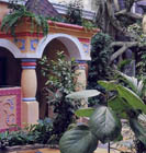 зимний сад, дизайн, ландшафтный дизайн