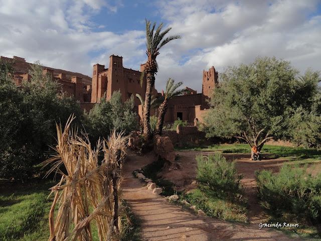 marrocos - Marrocos 2012 - O regresso! - Página 5 DSC05436