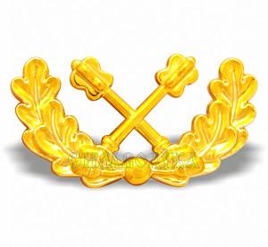 Емблема на погони козаків