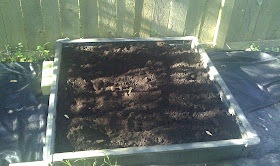 Hit The Road Travel Blog Raised Garden Bed From Costco