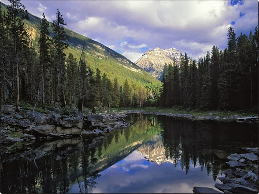 Horseshoe Lake, Jasper National Park, Canada.jpg