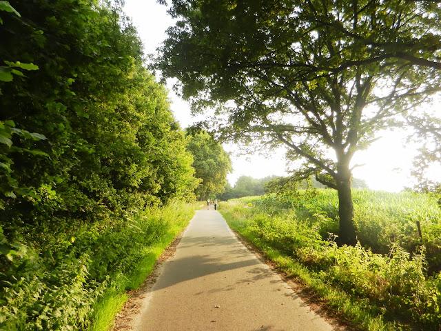 100/110km de la Campine (Kempenlandtocht; NL):1-2/8/2014 Geldrop%252C%25200203-08-13%2520105