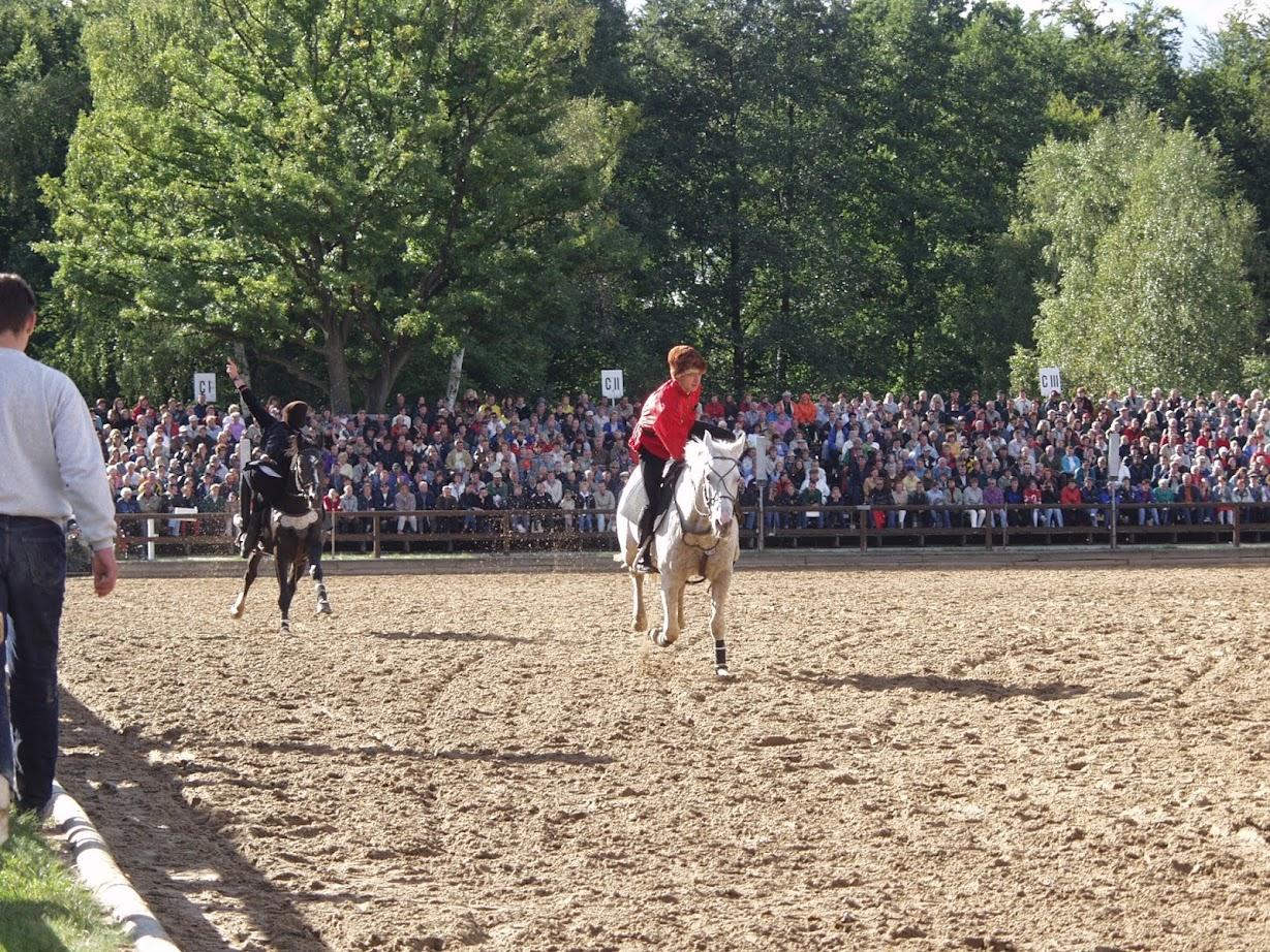 Kosakenritt bei der Hengstparade in Moritzburg bei Dresden