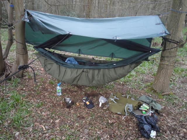 A wood, a hammock, a wild camp