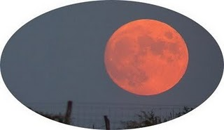 The Full Moon In October Image