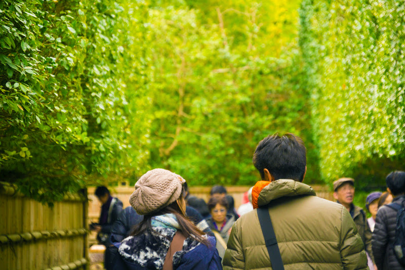 京都 銀閣寺垣 写真1
